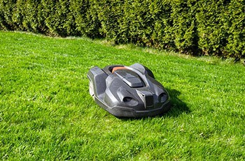 robotic lawn mower cutting grass