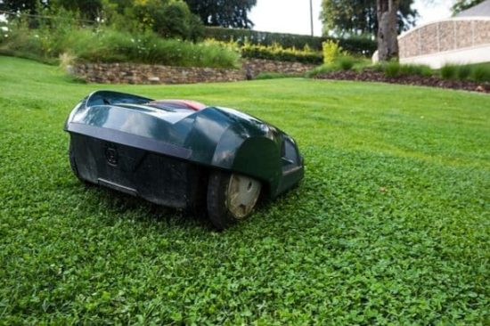 a robotic automatic lawn mower in action