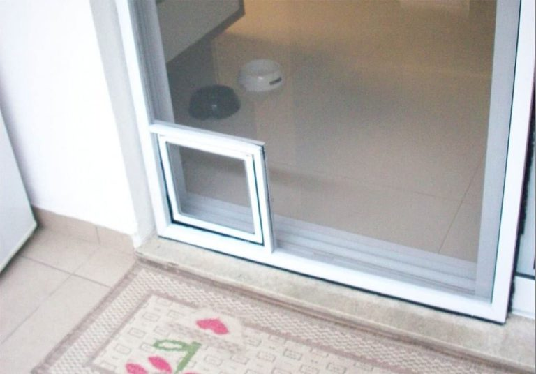 The Advantages of a Smart Dog Door (Do You Need One?)